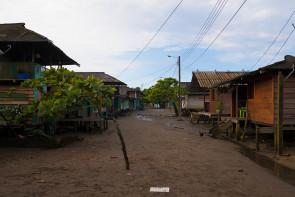Jurubira Chocó  (6 de 47)