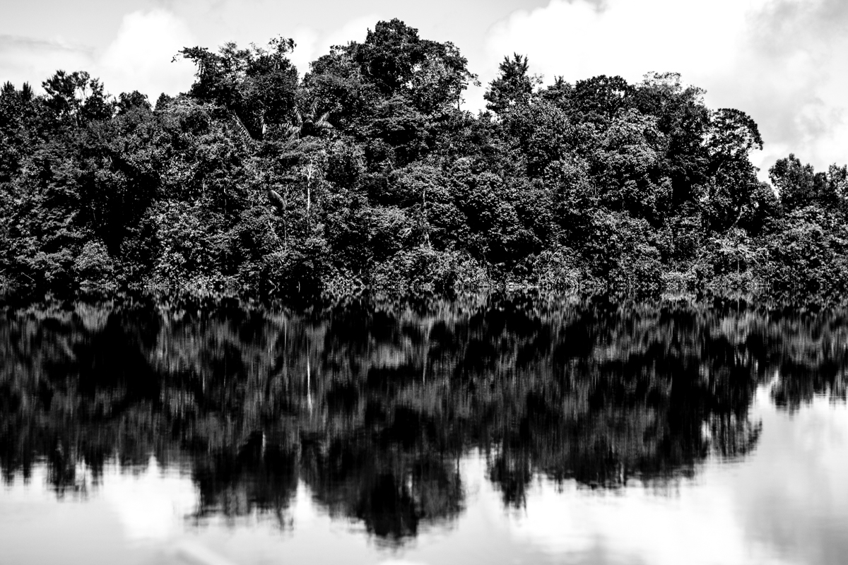Beté - Medio Atrato Chocó -13