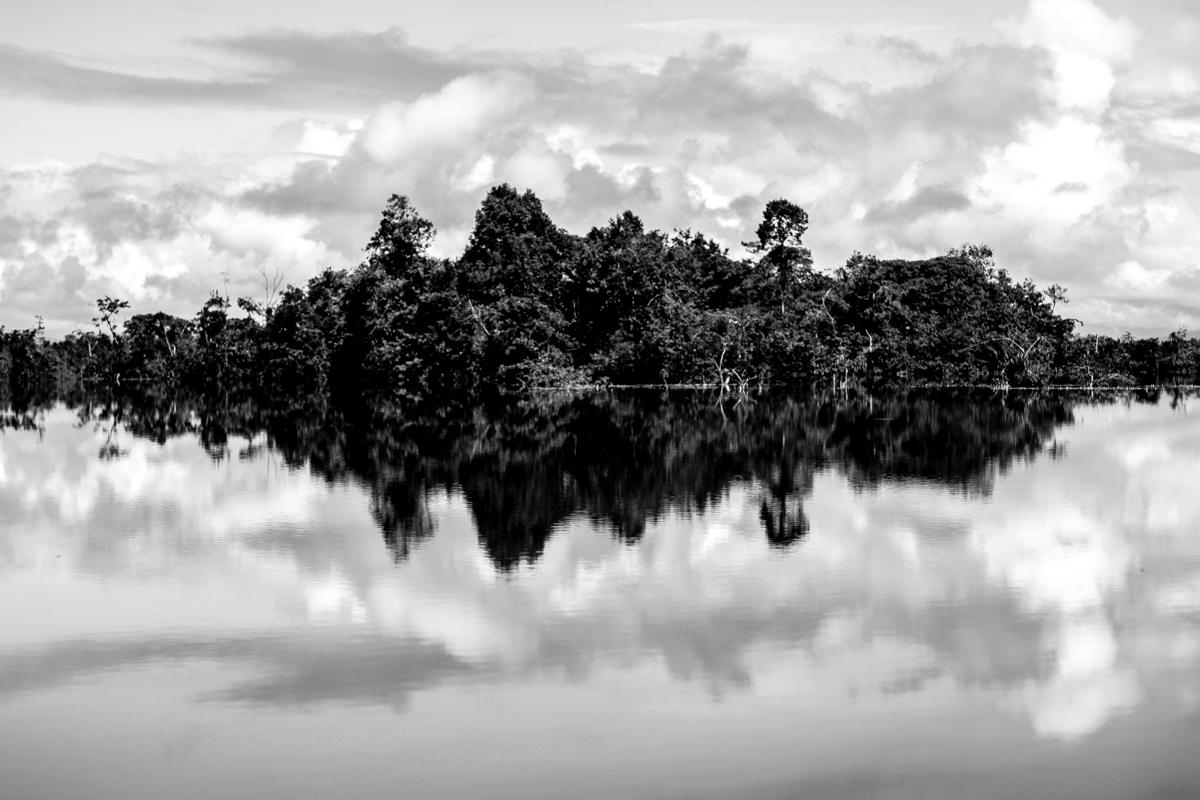 Beté - Medio Atrato Chocó -14