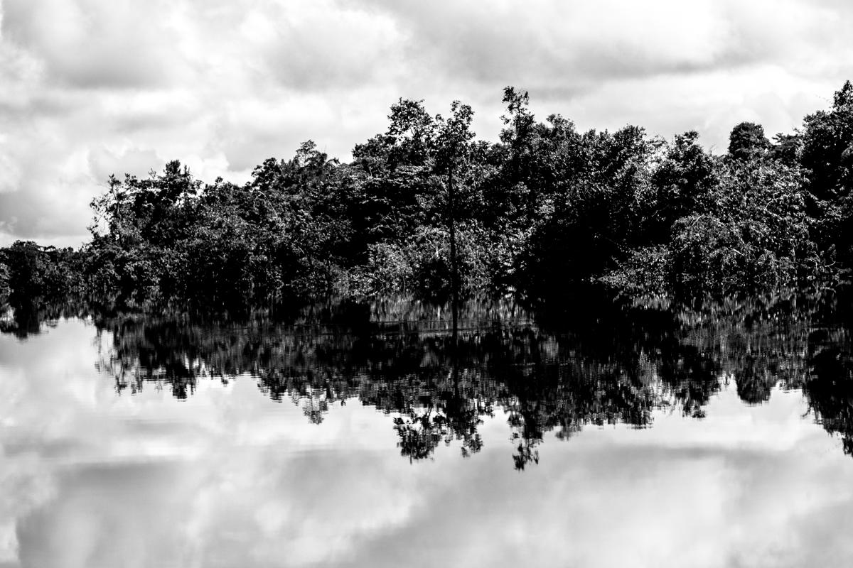 Beté - Medio Atrato Chocó -16