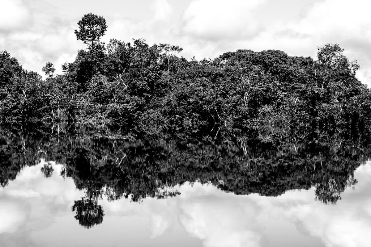 Beté - Medio Atrato Chocó -19