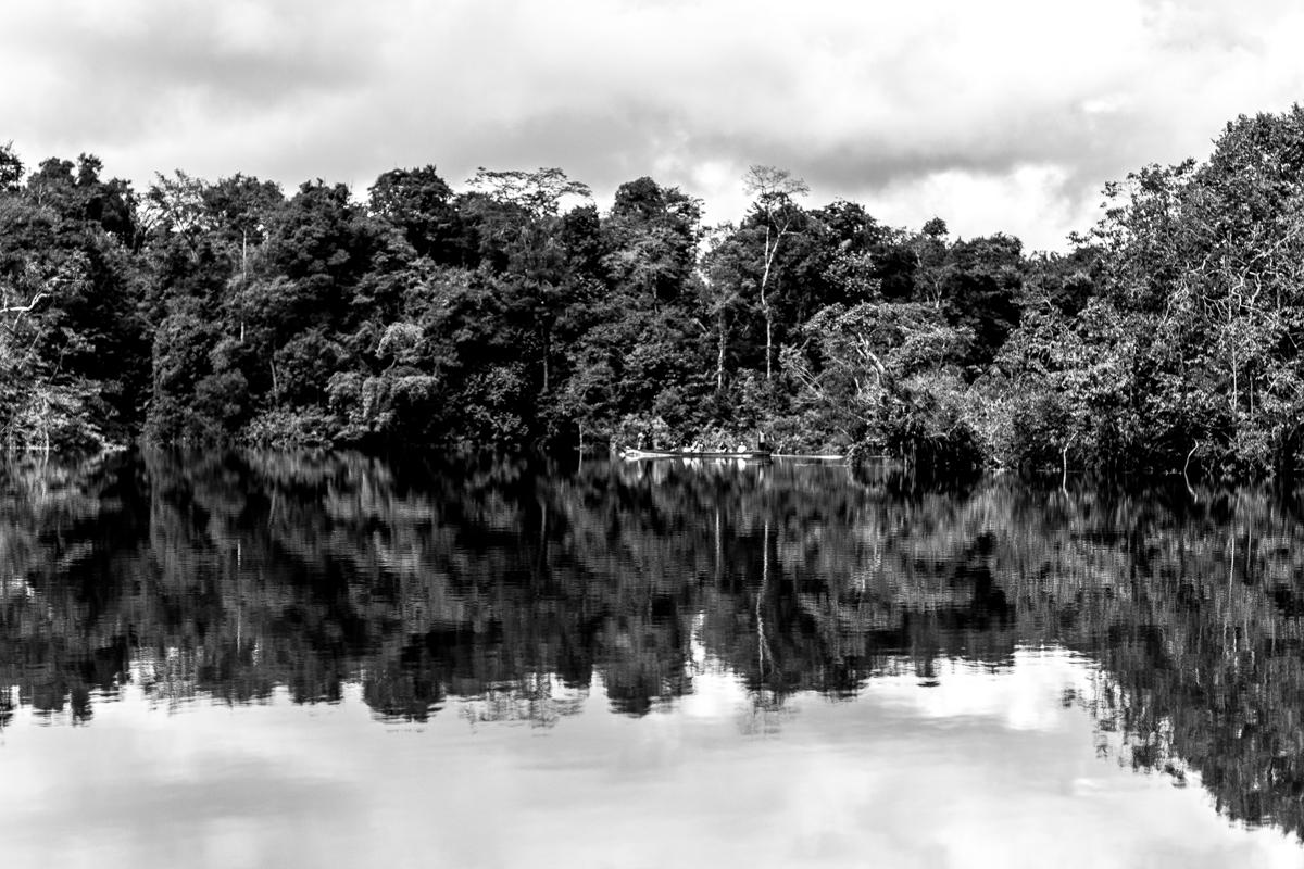 Beté - Medio Atrato Chocó -20