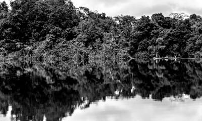 Beté - Medio Atrato Chocó -21