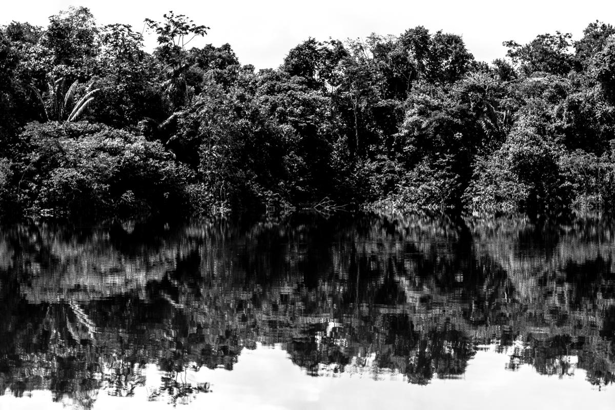 Beté - Medio Atrato Chocó -4