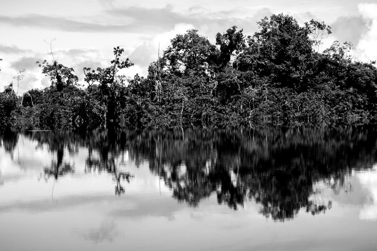 Beté - Medio Atrato Chocó -8